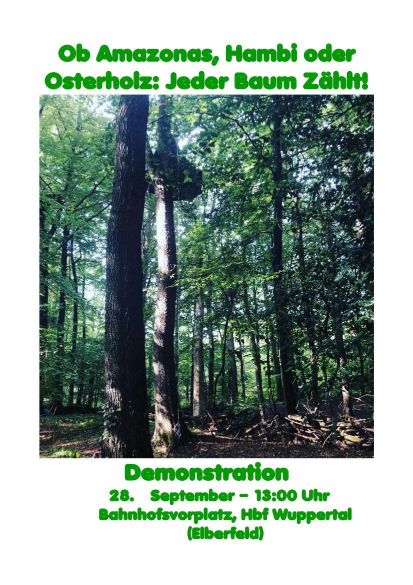 Ein Ruf aus dem Wald: Ob Amazonas, Hambi oder Osterholz: Jeder Baum Zählt!