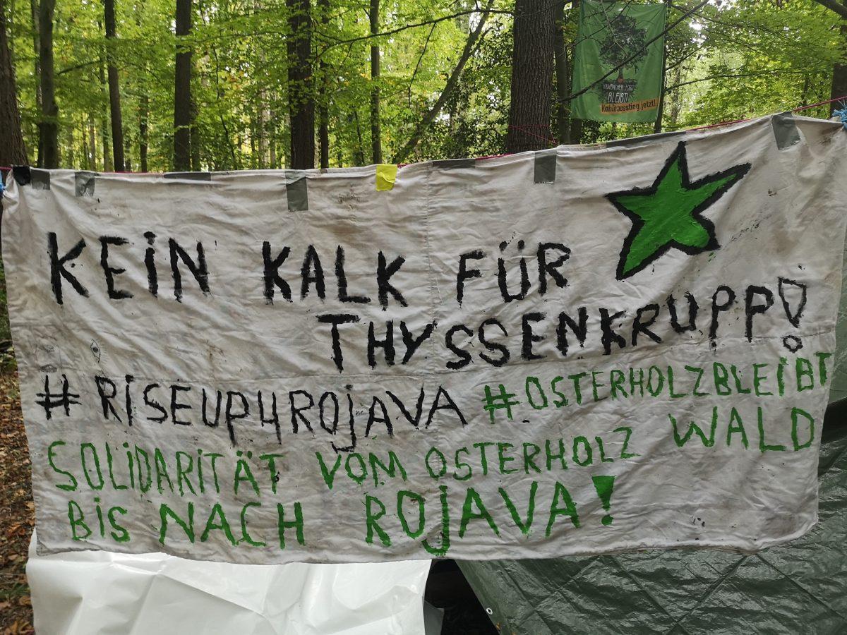 Jeder Baum Zählt: Solidarität mit Rojava!