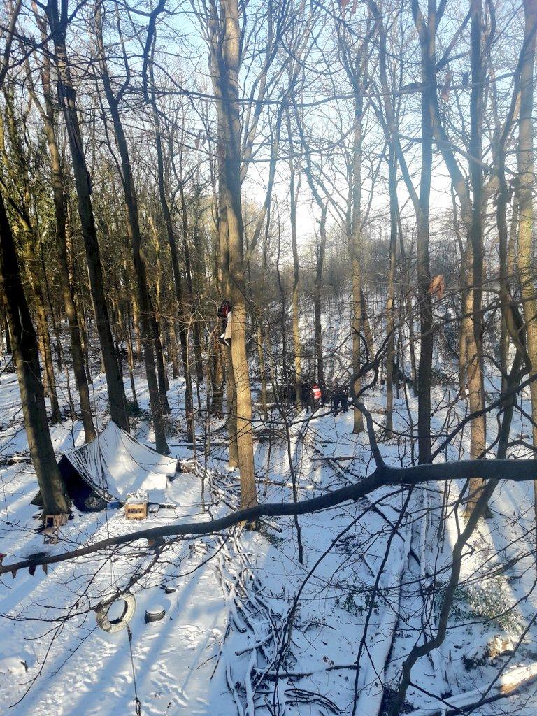 Osterholz Wald: Tag X kommt näher, bereitet euch vor! Das Spielfeld bestimmen wir!