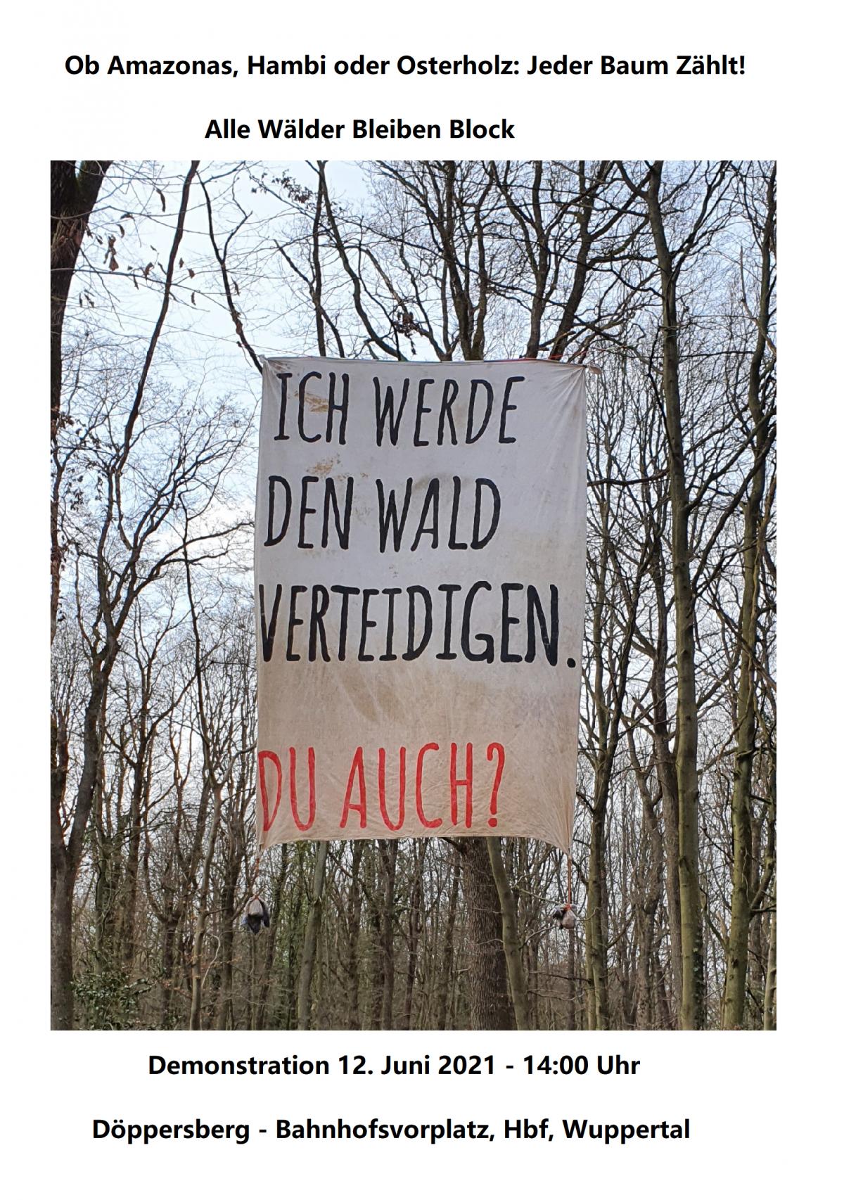 Ob Amazonas, Hambi oder Osterholz: Jeder Baum Zählt! – Ein erneuter Ruf aus dem Wald